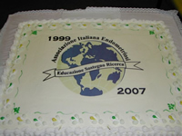 Picture of AIE cake